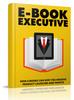 Thumbnail E-book Executive  (MRR )